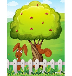 A rabbit and a squirrel playing under the cherry vector image