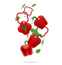 flying fresh red bell peppers and spices concept vector image