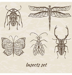 set of abstract insects vector image vector image