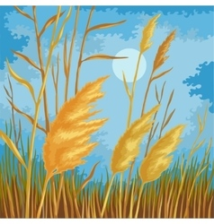 Yellow reed leaves vector image vector image