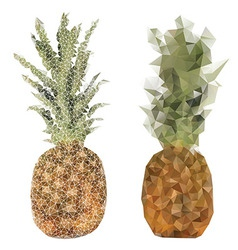 pineapple fruit triangle design vector image vector image