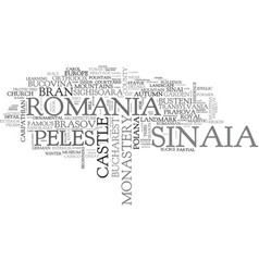Sinaia word cloud concept vector