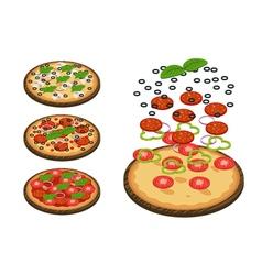 Complete pizza vector