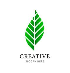 creative green leaf logo design template vector image