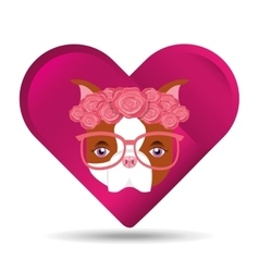 Cute dog pet with flower and glasses heart vector