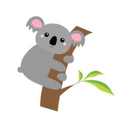 Koala bear face head on tree branch cute vector