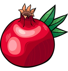 Pomegranate fruit cartoon vector