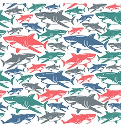 Shark seamless pattern vector
