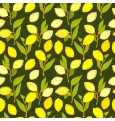 Seamless pattern with lemons background vector image