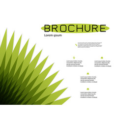 Brochure cover design and flyer layout templates vector