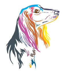 Colorful decorative portrait of saluki dog vector