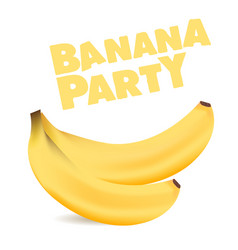 fruit banana party white background image vector image