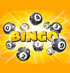 lotto balls around the word bingo vector image