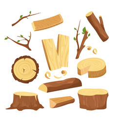 set of materials for wood vector image