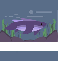 Sharks that dont exist vector