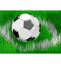 soccer ball on soccer field vector image