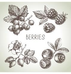 Hand drawn sketch berries set of eco food vector