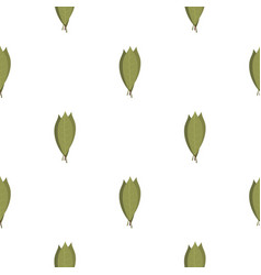 Bay laurel leaves pattern flat vector