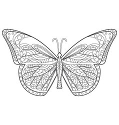 Butterfly for coloring vector