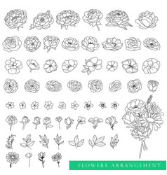 collection beautiful flowers and floral objects vector image