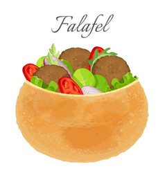 Delicious falafel full of meat and fresh vector