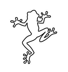 Frog lines vector