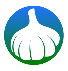 garlic simple sign white icon in bluish vector image