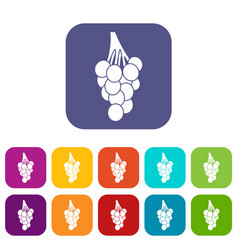 Grapes icons set flat vector