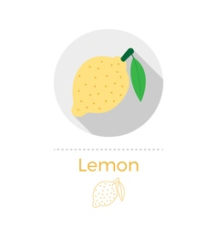 Lemon with a leaf vector image