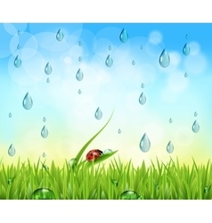 nature background with raindrops vector image
