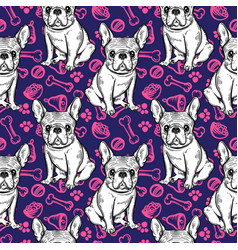 seamless cute pattern with french bulldog home vector image