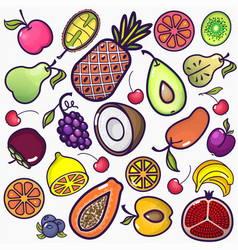 set colorful fruit icons isolated on a white vector image