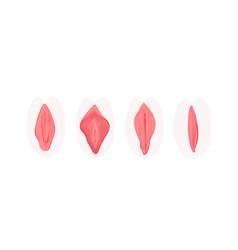 vagina correction plastic surgery flat icon vector image