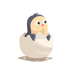 adorable newborn penguin hatching from egg vector image