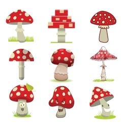 Cartoon different types of amanita mushrooms vector