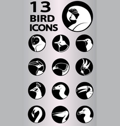 Bird icons collection vector