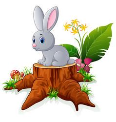 cute bunny posing on tree stump vector image