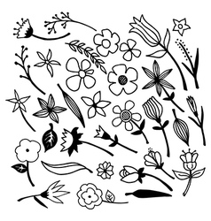 Flowers and leaves Set 2 vector