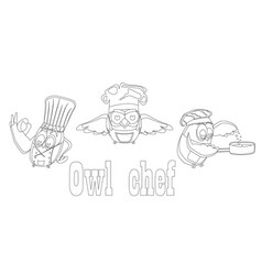 funny owls set on a chef theme on an isolated vector image