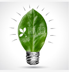 green bulb leaf with sketched vector image