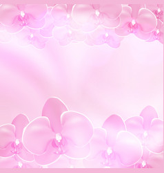 Pink flower orchid background vector