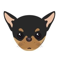pinscher dog cartoon vector image