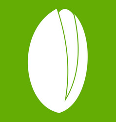Pistachio nut icon green vector