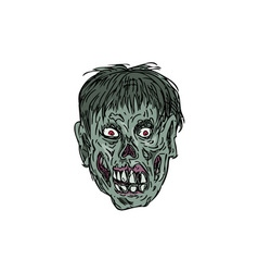 Zombie Skull Head Drawing vector image