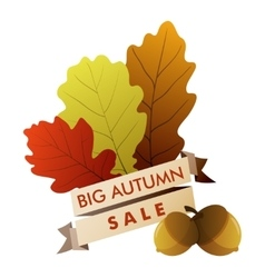 big autumn sale vector image vector image