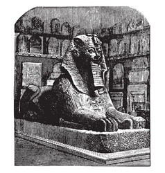 Androsphinx of thothmes sphinx vintage engraving vector