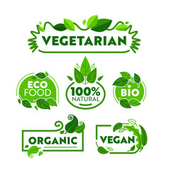 Green eco vegetarian organic food icon banner set vector