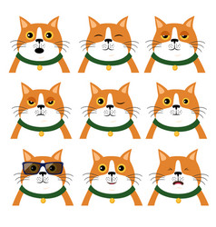 set of different emotions cat portrait of animal vector image
