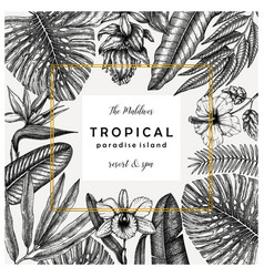 tropical wedding greeting card or invitation vector image
