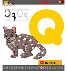 letter q with cartoon quoll vector image vector image